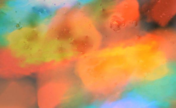 Lotus Lake - video